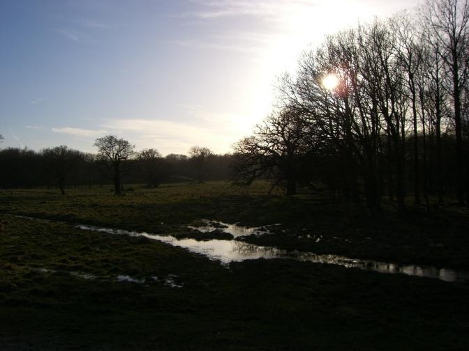 Ausflüge in die Natur: Jægersborg Dyrehave