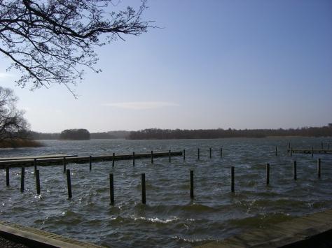 Lyngby-2007-04 002
