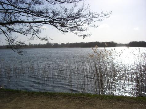 Lyngby-2007-04 016