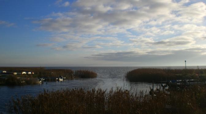 Urlaub an der dänischen Westküste: Ringkøbing Fjord