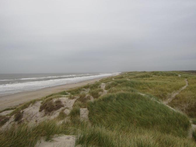 Urlaub an der Westküste in Dänemark: Kleine Hindernisse