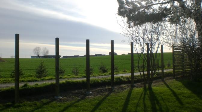 Frühlingsprojekte
